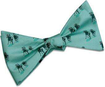 Bow Ties - Off To The Races Bow Tie In Seafoam Green By Bird Dog Bay