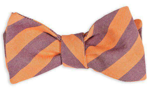 Bow Ties - Orange And Purple Oxford Stripe Bow Tie By High Cotton