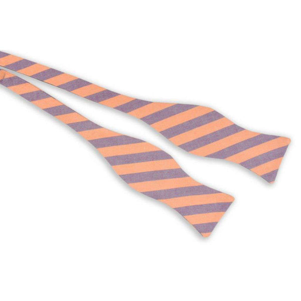 Orange and Purple Oxford Stripe Bow Tie by High Cotton