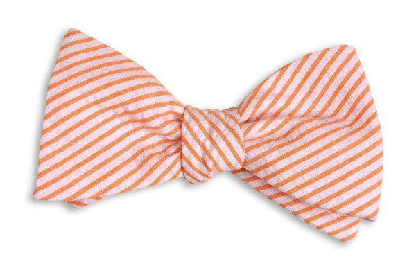 Bow Ties - Orange Seersucker Stripe Bow Tie By High Cotton