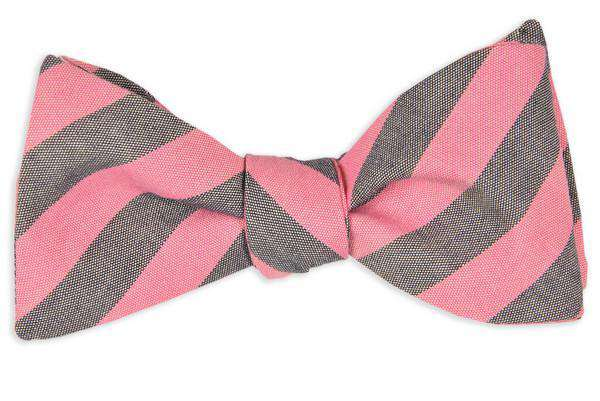 Bow Ties - Pink And Navy Oxford Stripe Bow Tie By High Cotton