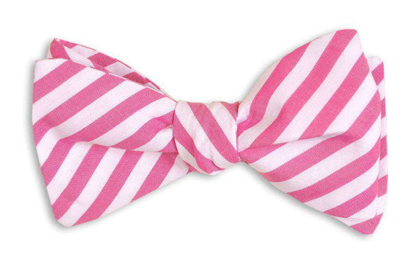 Bow Ties - Raspberry Stripe Bow Tie In Pink By High Cotton