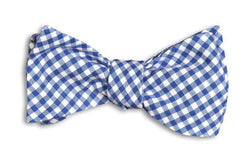 Bow Ties - Royal Blue Gingham Bow Tie In Blue And White By High Cotton
