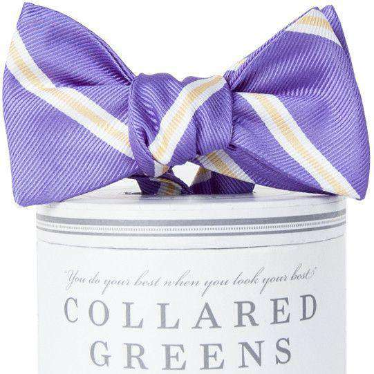 The Martin Bow Tie in Purple and Gold by Collared Greens
