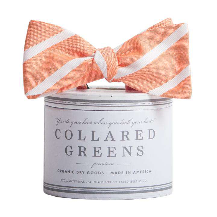 The Sawgrass Bow in Orange and White by Collared Greens
