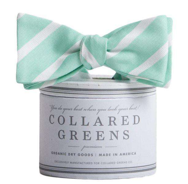The Sawgrass Bow in Teal and White by Collared Greens