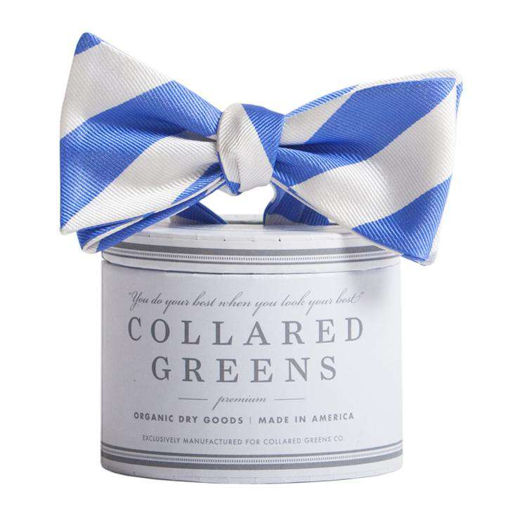 Bow Ties - The Torrey Bow In Royal Blue And White By Collared Greens