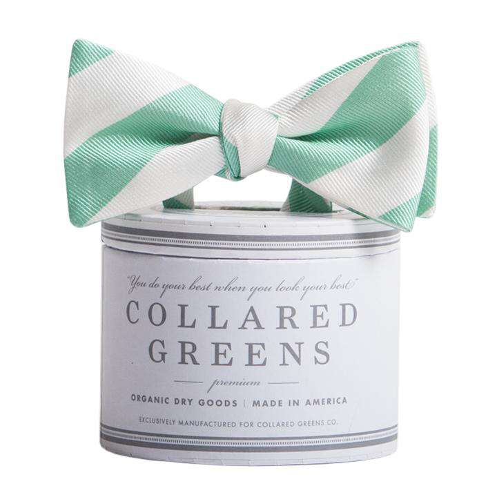 The Torrey Bow in Teal and White by Collared Greens