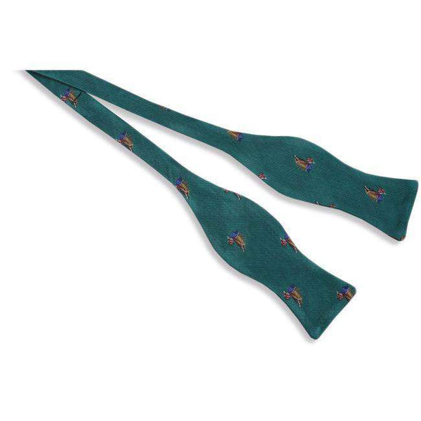 Wood Duck Bow Tie in Teal by High Cotton