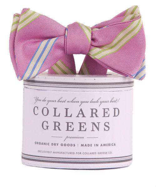 Zenyatta Bow in Pink by Collared Greens