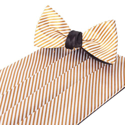 Goldfinger Cummerbund and Bow Set by Collared Greens