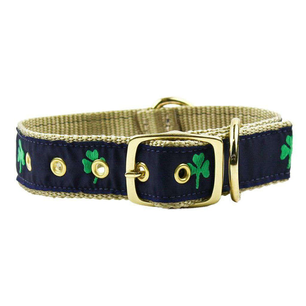 Dog Collars - Dog Collar In Navy Ribbon On Khaki Canvas With Shamrocks By Country Club Prep