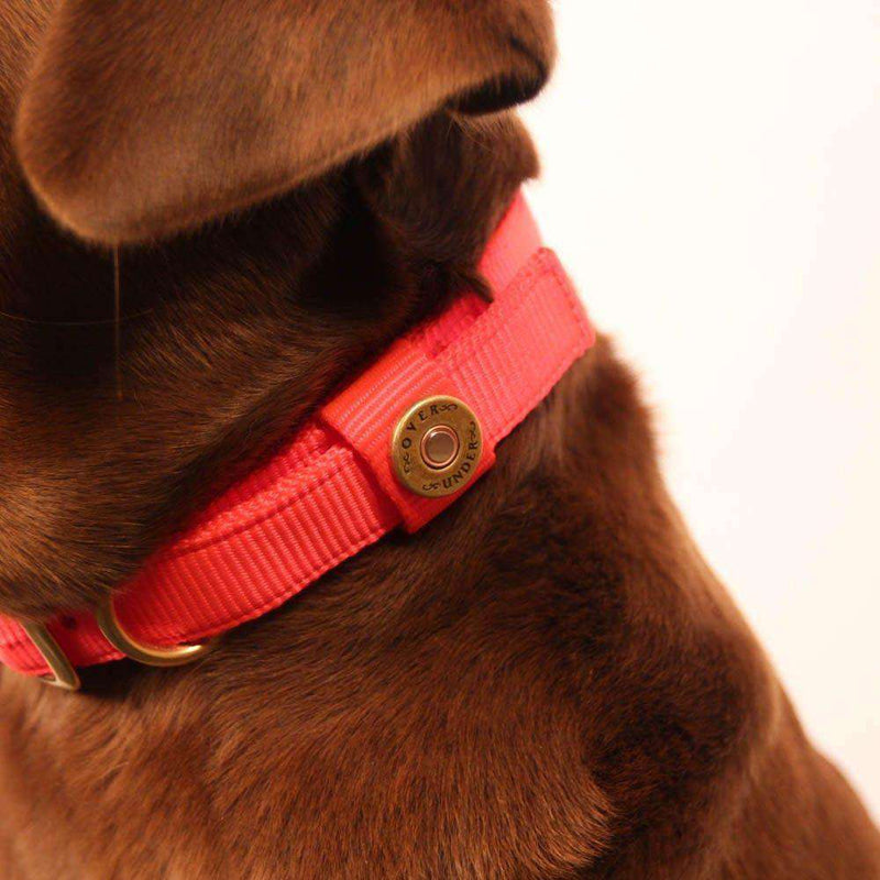 Huntsman Dog Collar in Blaze Orange by Over Under Clothing