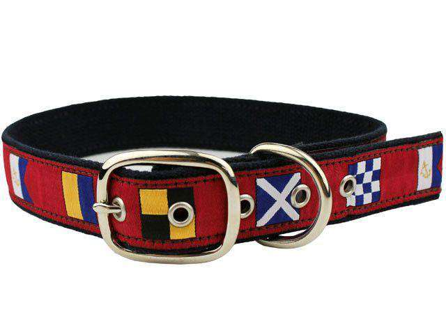 Signal Flag Dog Collar in Crimson by Anchored Style