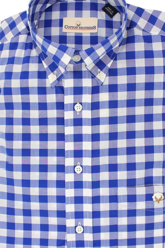 Button Down in Royal Blue Gingham by Cotton Brothers