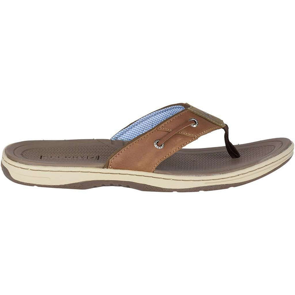 Men's Baitfish Thong in Tan Leather by Sperry