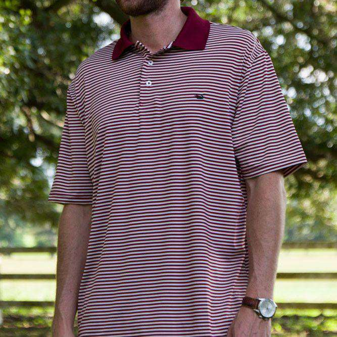 Men's Polo Shirts - Bermuda Performance Polo In Maroon And White Stripe By Southern Marsh