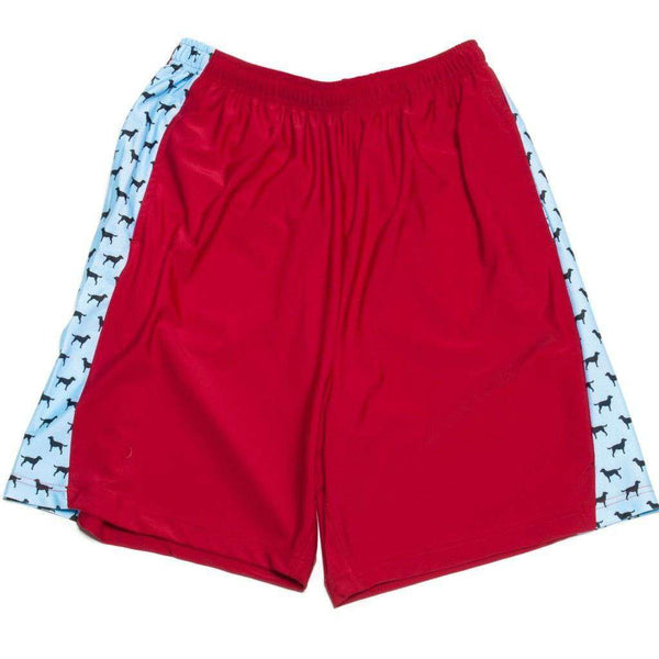 Man's Best Friend Shorts in Maroon by Krass & Co. - FINAL SALE