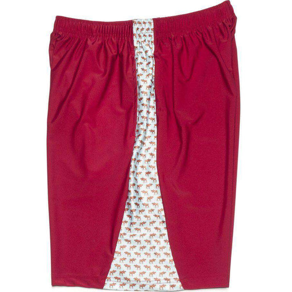 Moose Shorts in Maroon by Krass & Co.