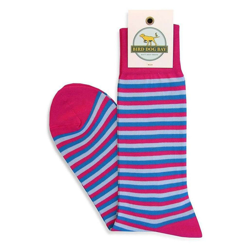Men's Socks - Triple Stripe Sporting Socks In Fuchsia And Blue By Bird Dog Bay - FINAL SALE