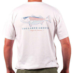 Men's Tee Shirts - American Made Striper Tee In White By Collared Greens