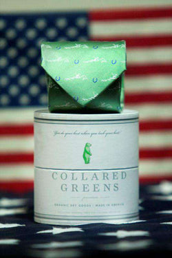 Neck Ties - Secretariat Tie In Green By Collared Greens