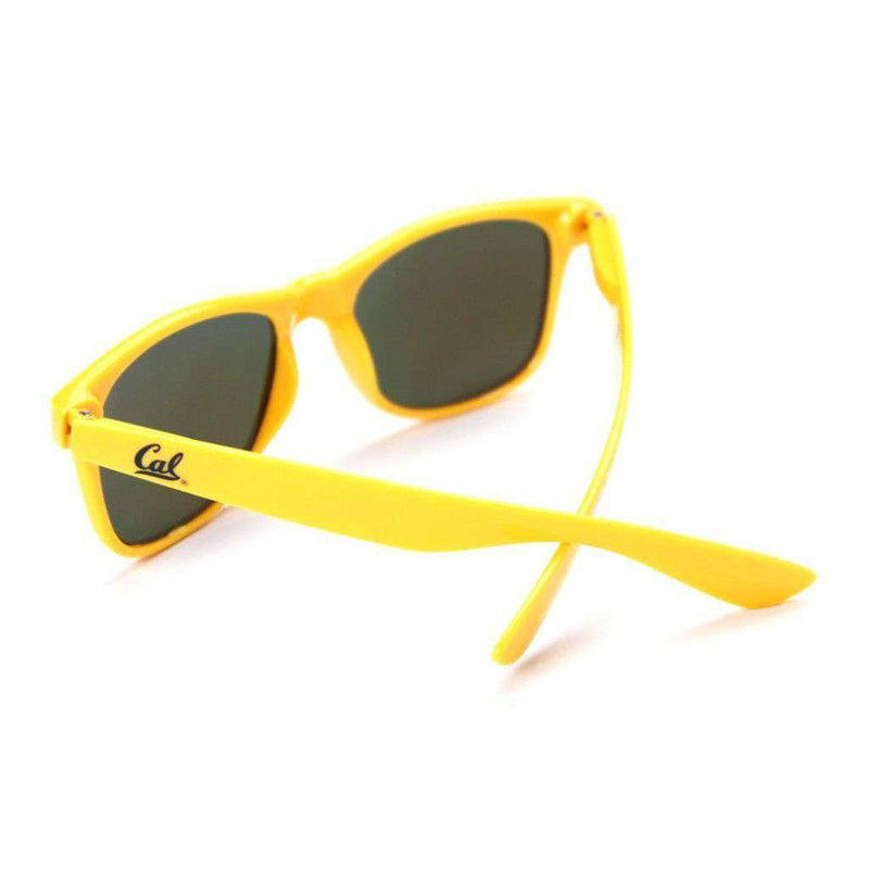 Sunglasses - Cal-BerkeleyThrowback Sunglasses In Gold By Society43