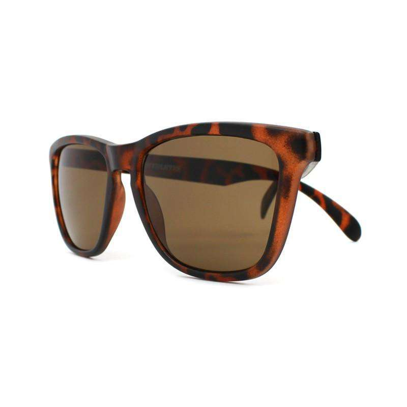Matte Tortoise Shell Premium Sunglasses with Amber Lenses by Knockaround