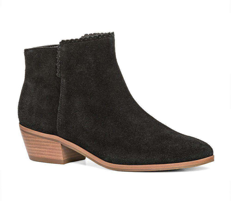 Women's Boots - Bailee Suede Booties In Black By Jack Rogers - FINAL SALE