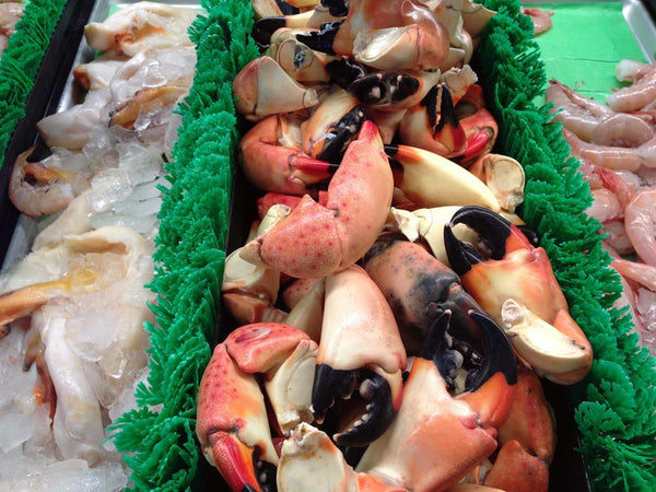Shellfish - Fresh from Florida