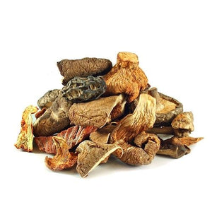 Gourmet Wild Foraged Dried Mushrooms