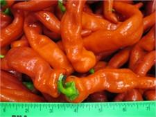 Hot and Mild Chili Peppers