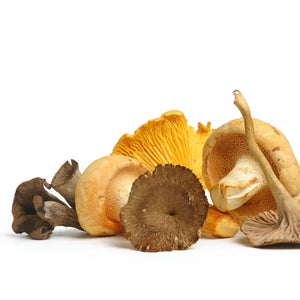 Seasonal, Fresh Wild Foraged Mushroom