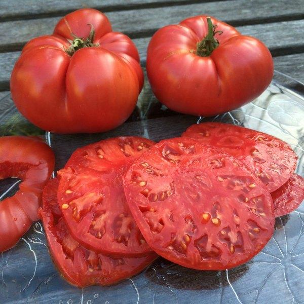 Finally, Ripe and Flavorful Tomatoes - Home Delivered - Only 4 Subscriptions Remaining