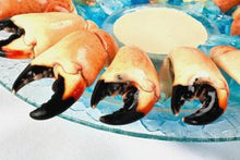 Fresh Stone Crab Claws and Crab Meat