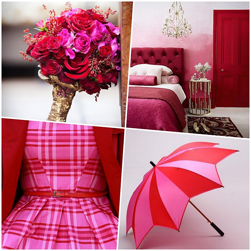 Color Craze: Fuchsia and Red Color Board
