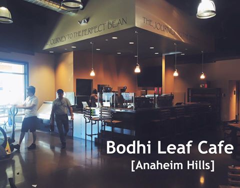 Bodhi Coffee Whole Foods