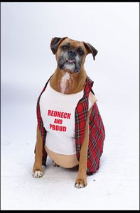 Pet Costume - Redneck