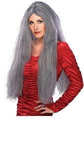"Witch 28"" Grey Wig"