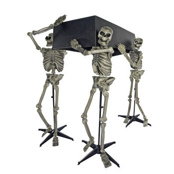 Skeleton Pall Bearers with Coffin