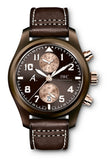 "IWC Pilot's Watch Chronograph ""The Last Flight"" IW388006"
