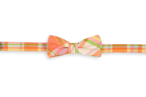 High Cotton Camden Madras Boy's Bow Tie