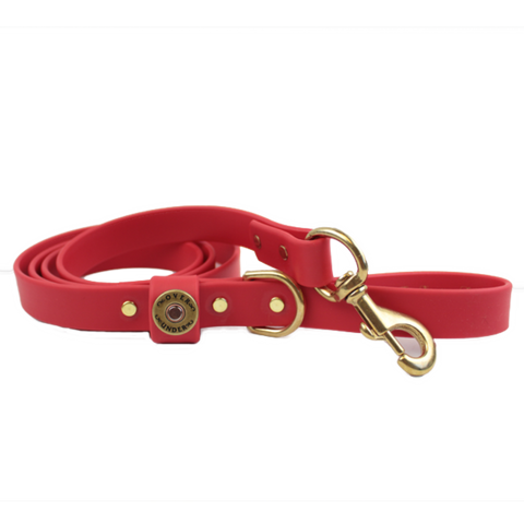 Over Under Water Dog Leash - Red