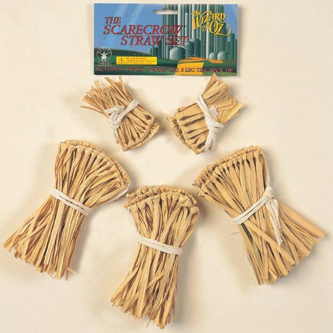 The Wizard of Oz - Scarecrow Straw Accessory Kit