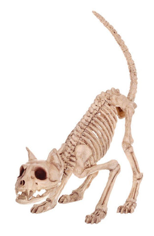 "10"" Lil' Skeleton Kitty"