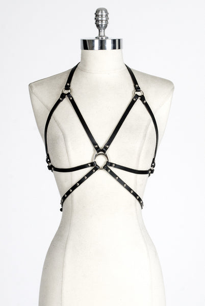 SEE NOW SHIP NOW - Anita Harness