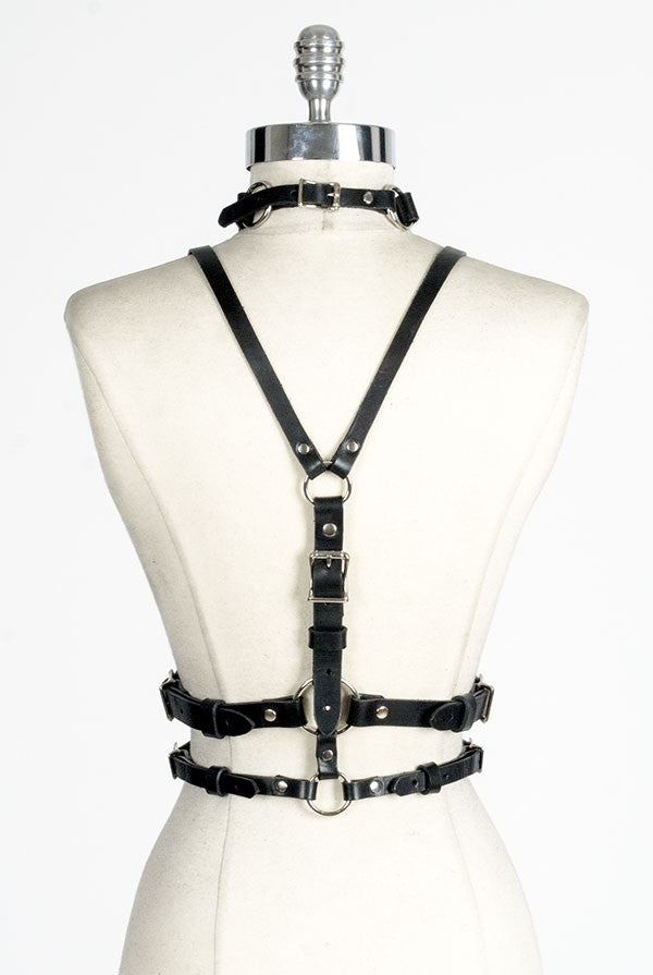 Cruxus Harness