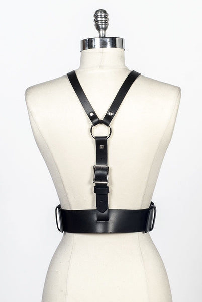 Gemini Harness