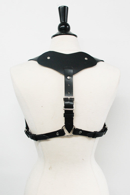 SEE NOW SHIP NOW - Hercules Harness