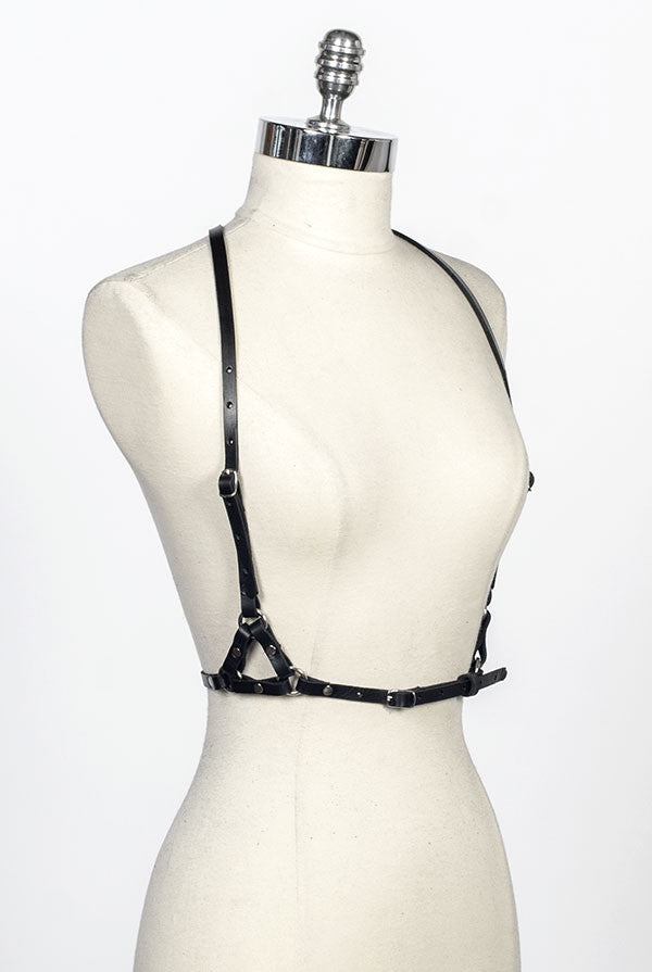 SEE NOW SHIP NOW - Orion Harness